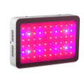 slim design 600w led grow light fixture