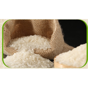 Professional China for Nutritious Rice Basmati White Medium Rice export to Kenya Manufacturer
