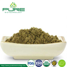 Supply organic Hemp Seed Extract Powder