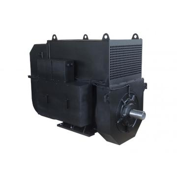 Double Bearing IP55 Generator