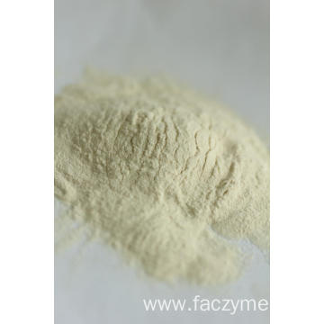 enzyme celluase Faczyme Cel