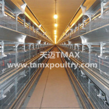 Broiler Chicken Cages For Poultry