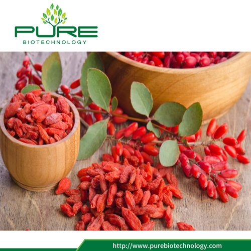 Different Sizes of Dried Goji Berry with Grade A and Grade B 8