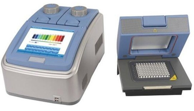 2 Blocks PCR Thermal Cycler