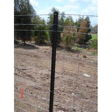 Metal Fence T Post For Farming fence