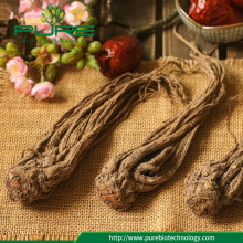 Dried Angelica Sinensis Root For Wholesales