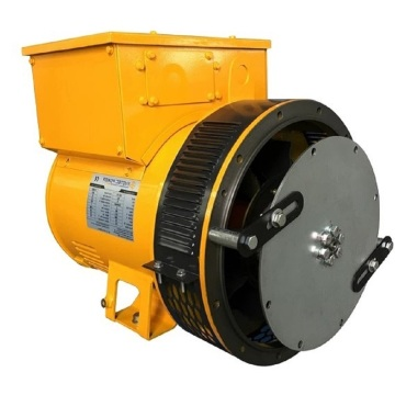 Land Use Low Voltage Single Bearing Generator