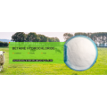 Betaine Anhydrous- Livestcok feed additives