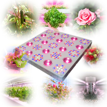 Hydroponic Grow Light Dimmable 1000W