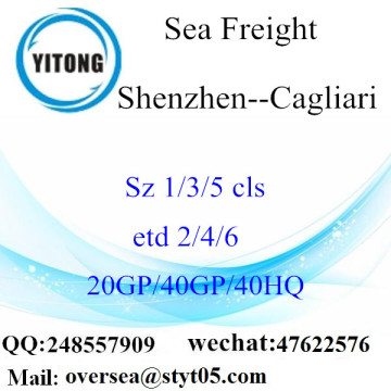 Shenzhen Port Sea Freight Shipping To Cagliari