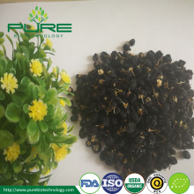 Buy Organic Black Chinese wolfberry from Tibet