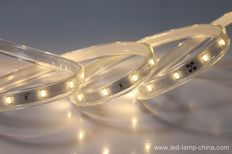 Christmas 5630 led strip