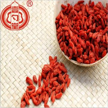 Air Dry Organic Goji Berry Fruit Supply