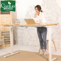 Modern Height Adjustable Standing Desk Electric Frame