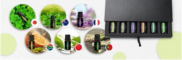 Bulk natural cypress essential oil price