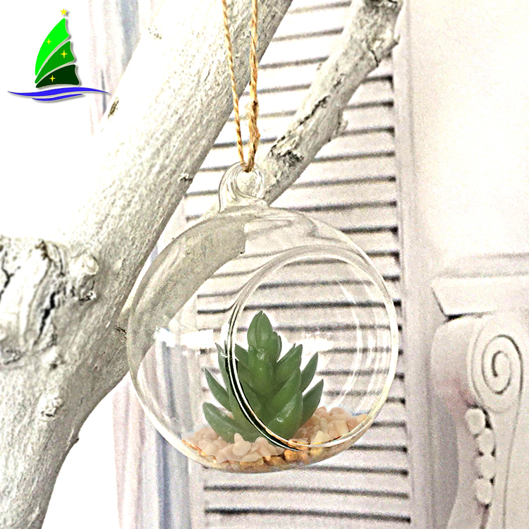 Clear Home Decor Glass Terrarium