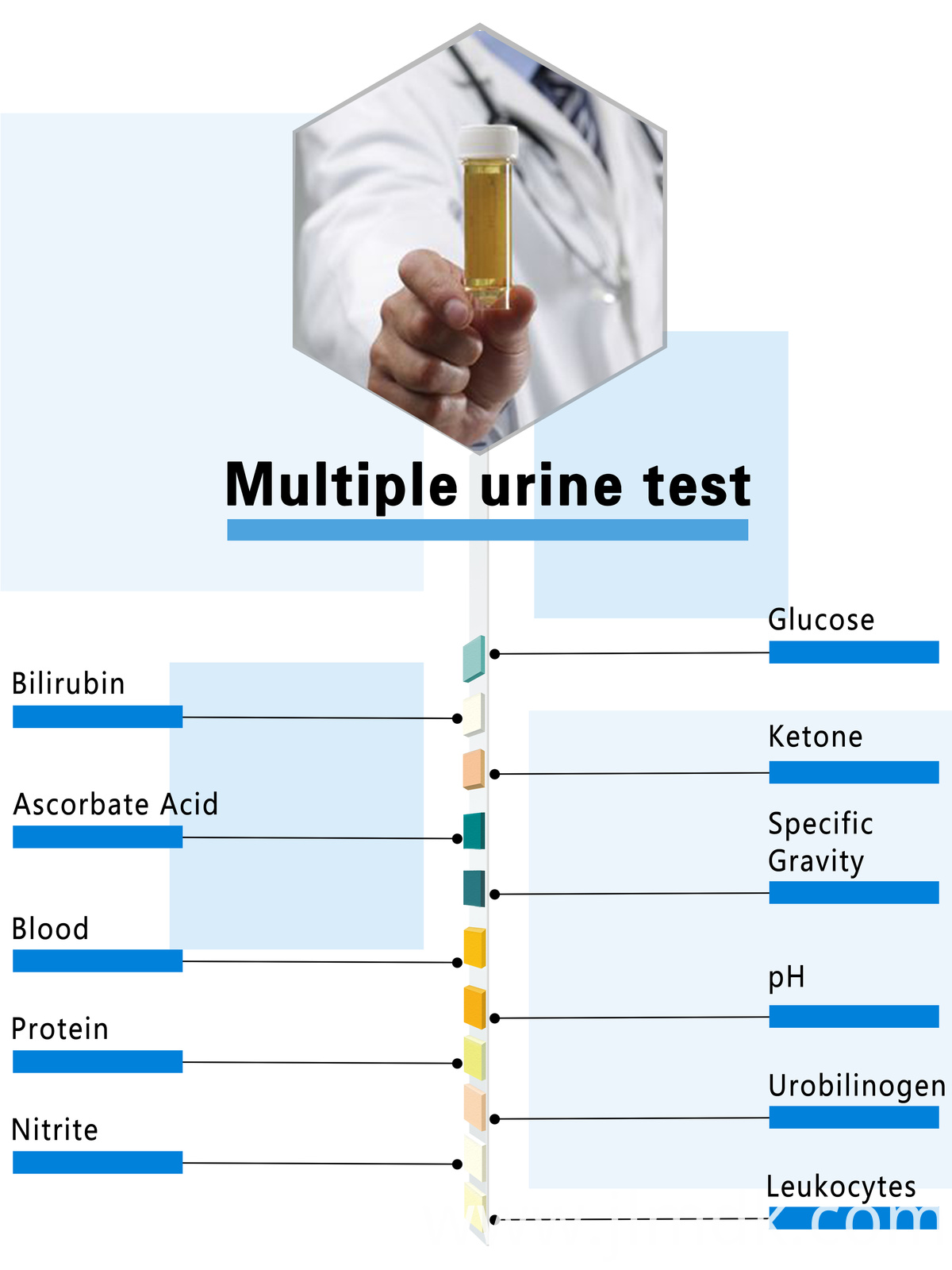 Urine Strips Wholesale